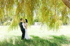 Abbeville Estate Auckland, Wedding Photographer, Kate Robinson Photography