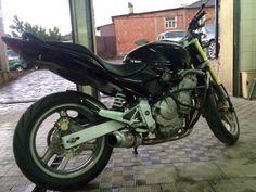10 Best Honda Hornet Images Hornet Vespa Motorcycles