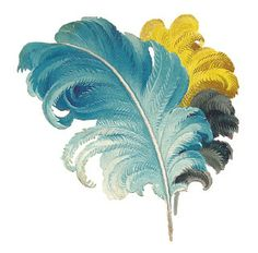 Antique Images: Free Feather Graphic: Victorian Scrap of Blue and Yellow Ostrich Feathers