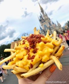 NEW! Bacon Mac and Cheese French Fries = Carb Heaven in Disney World! | the disney food blog