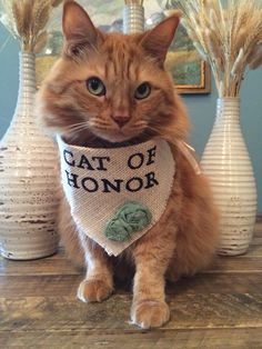 A personal favorite from my Etsy shop https://www.etsy.com/listing/231058275/ivory-cat-of-honor-girl-collar-with