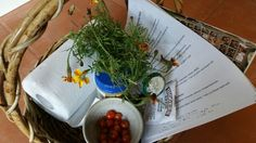 The Three Important Rules of Seed Saving - the easy peasy basics...