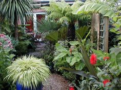 lush garden inspiration...