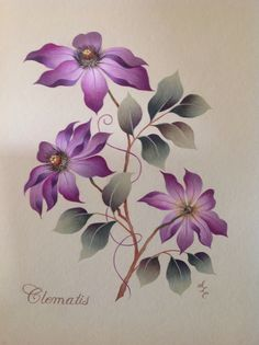 Clematis Botanical  |  Maureen McNaughton Design  |  Painted by Sandra L Cleveland