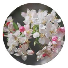 Cherry blossoms dinner party plates