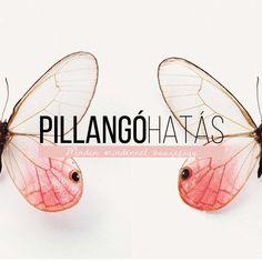 Pillangóhatás - az életben minden mindennel összefügg   Szikra magazinblog Texas, Blog, Blogging, Texas Travel