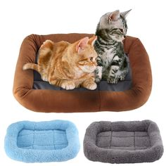 Comfortable Coral Fleece Pet Products Kennel Dog Cat Pads Soft Warm Cat Puppy Bed Mat For Cats Dogs Small Animals Cushion Sofa Animal Cushions, Cushions On Sofa, Puppy Beds, Dog Bed, Warm Bed, Bed Mats, Small Dogs, Small Animals, The Perfect Dog