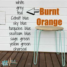Burnt orange goes with...