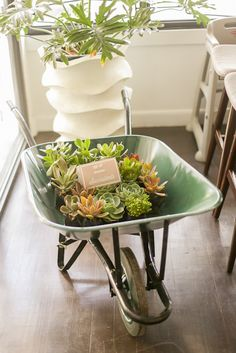 Succulents Placed in a Wheelbarrow from a Vintage Hipster Pop Up Flower Shop Party