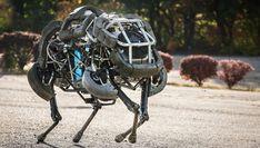 Advanced_Military_Robot_BigDog