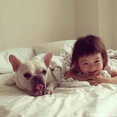 French Bulldog 寝んね #frenchbulldog #フレンチブルドッグ