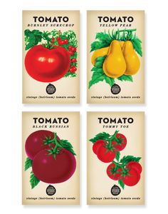 Vintage-style seed packet designs for The Little Veggie Patch Company in Australia.