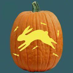8 Best Bunny Pumpkin Images On Pinterest Decorations D Halloween