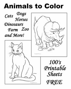 Animal coloring pages!