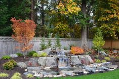 There are lots of affordable backyard landscaping ideas you can look into. For a backyard landscape upgrade, you don't need to spend so much cash to get an outdoor look that is easy and affordable. Rustic Landscaping, Landscaping With Rocks, Backyard Landscaping, Landscaping Ideas, Patio Ideas, Backyard Ideas, Backyard Water Feature, Ponds Backyard, Backyard Waterfalls