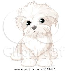 Clipart of a Cute Bichon Frise or Maltese Puppy Dog Sitting - Royalty Free Vector Illustration by Pushkin