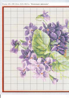 Gallery.ru / Фото #146 - Цветы - logopedd