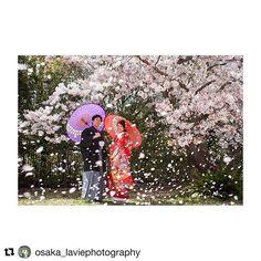 【laviefactory】さんのInstagramをピンしています。 《春の撮影をご検討の方 必見です!  #Repost @osaka_laviephotography with @repostapp ・・・ 桜吹雪..* 2/5 ・ 3/5  2days 大阪フェア開催 桜・新緑の時期に撮影をご検討のお客様へ、大変お得な大阪店限定プランをご用意! さらに即決のお客様にはご新婦様衣装ランクアップ30,000yen off!  是非この機会にお越しくださいね! ただいま来店ご予約承り中です★  @laviefactory @lavie_osaka_family  #photoby_doike  #ハートのある写真#生きる写真 #wedding #photo #laviefactory #instawedding #ig_wedding #smile #weddingtbt #結婚式 #スタジオフェア #写真 #カメラマン  #ウェディングフォト #ウェディングドレス #花嫁diy #ロケーション前撮り #プレ花嫁 #卒花 #エンゲージメントフォト#写真が好きな人と繋がりた…