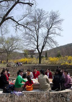 Picnic in Pyongyang, North Korea, via Flickr.