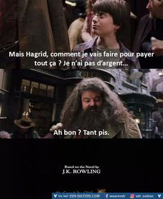 Humorous image, humorous image and humorous movies to find on VDR – Sellers of desires. Uncover one of the best photos and humorous photos of the online! Harry Potter Animé, Images Harry Potter, Harry Potter Universal, Drarry, Jarry Potter, Funny True Quotes, Pokemon, Geek Humor, Hermione