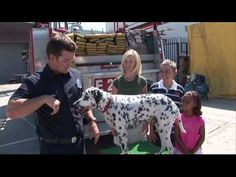 ▶ Stop, Drop, and Roll & Get Low and Go! and calling 911. Fire Safety video for kids.