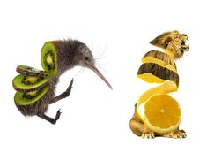 Animal Food: My Series Of Animals Crossed With Fruits And Vegetables