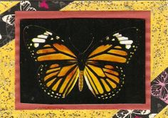 April 2014 - Butterfly ATC Received from Dee Munoz in Las Vegas