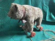 Very Rare vintage Steiff Mohair bear pull toy Circa 1926 Antique Teddy Bears, Pull Toy, Wheels, Toys, Antiques, Vintage, Activity Toys, Antiquities, Antique