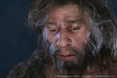 Reconstruction of Neanderthal male found at Shanidar cave in northern Iraq, by Elisabeth Daynès: