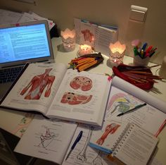 Inspiration Motivation Medizinstudent 55 Ideen Source by Med Student, Student Studying, Student Goals, Student Life, Medical Students, Medical School, Nursing Students, Study Organization, School Study Tips