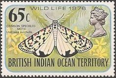 British Indian Ocean Territory, Commonwealth, Butterflies, Stamps, Animal, Collection, Insects, Seals, Federal