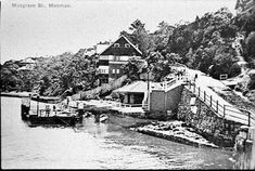 Wharf in Looking north along Mosman Bay with Musgrave St. Ferry Wharf at the left. Historical Images, Back In The Day, Paris Skyline, Sydney, Past, Australia, History, City, Travel