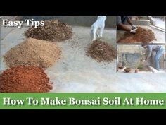 How to Make Bonsai Soil at Your Home | How to Make Bonsai soil for Begin...
