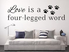 "This ""Love Is A Four-Legged Word"" decal was created specifically for pet lovers! Make a lasting impression by easily applying this eye-catching decal to your family room, living room, hallway, entranc Grooming Salon, Pet Grooming, Cat Quotes, Animal Quotes, Dog Rooms, Cat Wall, Dog Houses, Dog Cat, Pet Pet"