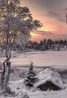 Essence of Nature Winter Sunset, Winter Love, Winter Scenery, Winter Snow, Winter Christmas, Winter Photography, Landscape Photography, Nature Photography, Winter Magic
