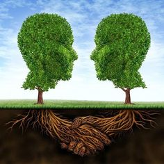 Find Business Collaboration Teamwork Growth Roots Shape stock images in HD and millions of other royalty-free stock photos, illustrations and vectors in the Shutterstock collection. Thousands of new, high-quality pictures added every day. Photo Main, Life Coach Certification, Human Head, Beneath The Surface, Daily Meditation, Fertility, Cactus Plants, Collaboration, Roots