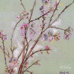 "Solvej, "" Fleurs de pêcher "" 2005  pastel  25x25 Mademoiselle Bio, Portraits, Pastel Drawing, Needlework, Glass Vase, Drawings, Nature, Pune, Provence"