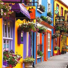 Scenic street in County Cork, Ireland. County Cork is where my Grandfather was born. Places Around The World, Oh The Places You'll Go, Places To Travel, Places To Visit, Around The Worlds, Travel Destinations, Beautiful World, Beautiful Places, Romantic Places