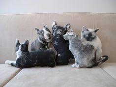 Custom Silkscreen Pet Pillow