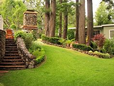 landscaping idea for the front yard