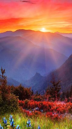 Such a beautiful view bursting with so many colors just lovin the sun rays that are beaming down. Best Nature Images, Beautiful Nature Pictures, Amazing Nature, Beautiful Landscapes, Beautiful World, Sunrise Landscape, Beautiful Sunrise, Nature Wallpaper, Iphone Wallpaper