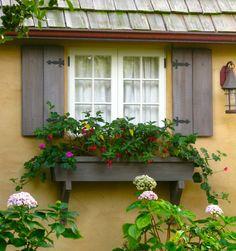 Carmel Jan 2010 063   window, flower box