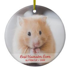 Personalized Hamster Pet Photo & Name Christmas Ceramic Ornament - home decor design art diy cyo custom