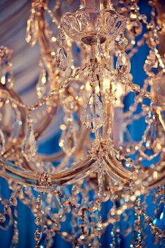 Chandelier Beauty