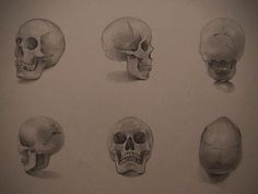 Skull Drawing by Ha Young Lee