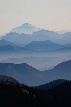Foggy Mountain Landscape II, Cascade Range, Mount Rainier National Park, Washington, USA - Canvas Print