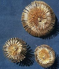 VINTAGE MONET DEMI BROOCH PIN and CLIP EARRINGS SET ~ SIGNED ~ GOLD STARBURST