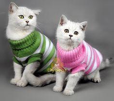 Конфеты ткань в полоску цвет тёплый Cat свитер домашнее животное Jumper Cat одежда для компактный Cat собака домашние животныекупить в магазине M&A FashionнаAliExpress