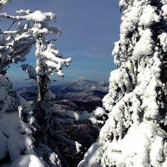 Headed down the #fallline at #MadRiverGlen. #mrg #skiing #skiitifyoucan #winter