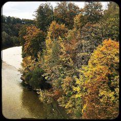 Fall colours  #soultravels #outdoorgirl #adventuregirl #mindful #munichandthemountains